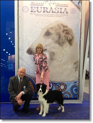 "2014 International dog show ""Eurasia Dog Show"""