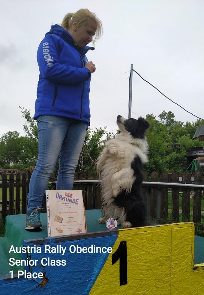 Ausztria Rally Obedience